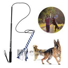 Extendable Dog Puppy Teaser Pole Wand Outdoor Interactive Pet Dog Flirt