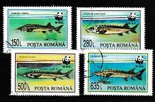Sturgeon WWF set of 4 cto stamps 1994 Romania #3954-7 fish