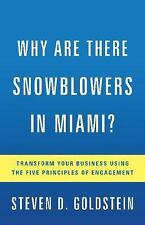 WHY ARE THERE SNOWBLOWERS IN MIAMI?