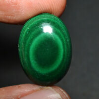 Cts. 21.60 Natural Beautiful Evil Eye Malachite Oval Cabochon Cab Loose Gemstone