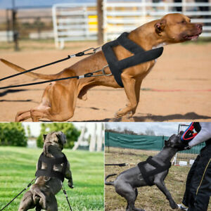 Dog Harness for Large Dogs No Pull Soft Padded Weight Pulling Training Harness