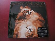 Gary Wilson Electronic Endicott 2010 Western Vinyl