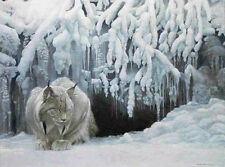 Robert BATEMAN Dozing Lynx LTD art Giclee Canvas stretched signed numbered