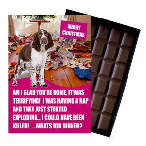 Novelty Chocolate Gifts Springer Spaniel Funny Greeting Christmas Xmas Card Bar