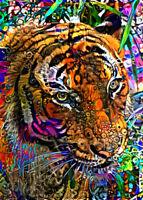 "ACEO Collectible Art Card ""Tiger"""