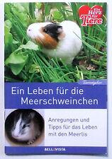 Meerschweinchen - Ratgeber - Ein Herz für Tiere Buch - Leben mit Meerlis - Tipps