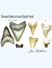 Pictorial Guide to Fossil Shark Teeth : Shark Teeth from Around the World by...
