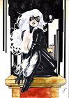 Black Cat (11