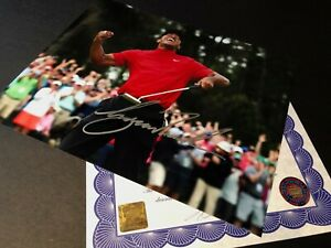 Hand Signed Tiger Woods 10x8 Photo - Authentic Autograph with Proof