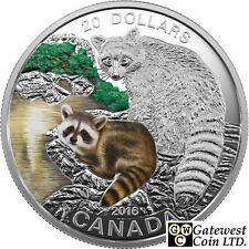 2016 'Raccoon - Baby Animals' Colorized Proof $20 Silver Coin 1oz .9999 (17590)