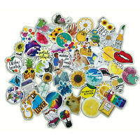 53 PCS Cute Funny Life Lot Skateboard Stickers Vinyl Laptop Luggage Decals Dope