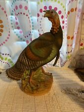 andrea by sadek Male Turkey