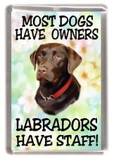 """Labrador (Choc.) Fridge Magnet """"Most Dogs Have Owners Labradors Have Staff!"""""""