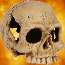 Halloween Teelichthalter Totenkopf ohne Licht Party Gag Curios Geschenk OLD Whit