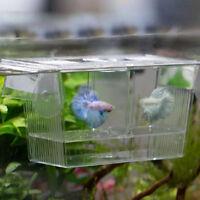 Aquarium Fisch Zucht Box Aquarium Fischbrut Falle Brutplatz Neu S/L 2 Lay D V3W1
