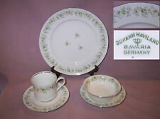 42 pc Set Forever Spring Johann Haviland Bavarian China Silver Trim Floral Disc