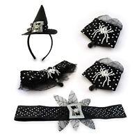 Adulto Mujer Cuento de Hadas Bruja Malvada Negro Disfraz Accesorio Kit Halloween