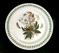Beautiful Portmeirion Botanic Garden Christmas Rose Dinner Plate, As New