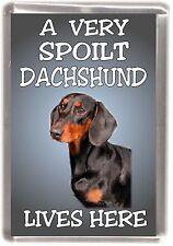 "Dachshund Dog Fridge Magnet No. 2  ""A VERY SPOILT ..... LIVES HERE"" by Starprint"