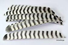 12 pezzi Bearpaw piena lunghezza Barred BIANCO PIUME RW tacchino molle molle naturali