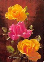 B52100 fleurs flowers roses