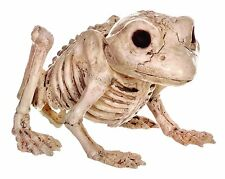 Crazy Bonez Skeleton Frog