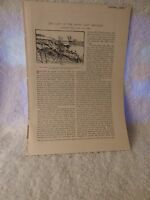 1885 Century Magazine Articles Civil War Malvern Hill Recollections of a Private
