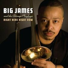 Big James And The Chicago Play - Right Here Right Now [CD]