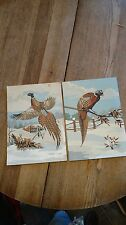 Paint by Number Painting PAIR Pheasant Bird HUNTING Pheasant flea market