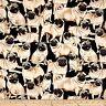 Animal Fabric - Pet Dog Pugs on Black - Timeless Treasures YARD