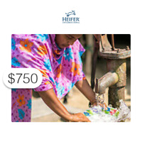 $750 Charitable Donation HEIFER INTERNATIONAL: Water for Life