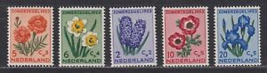 Netherlands Scott B249-B253 VF MH 1953 Flowers Semi-Postal Set