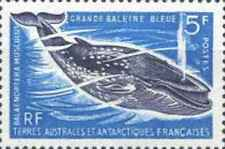 Timbre Faune marine Baleines TAAF 22 ** lot 13855