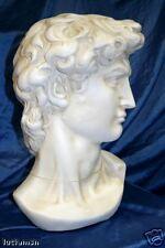 testa DAVID Michelangelo statua Oxolite Patinata soprammobile cm 40