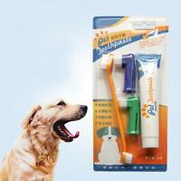 Pet Cat Dog vanilla Flavour Toothpaste + Pet Toothbrush + Replace Head Gift New