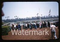 1950s Kodachrome Photo slide Hollywood Park Horse Racing Los Angeles CA  #4