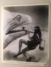 1966 Around The World Under The Sea Scuba Diving Vintage Movie Photo 283i