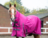 Lightweight No Fill Turnout Horse Rug 600D Standard And Combo Neck Waterproof