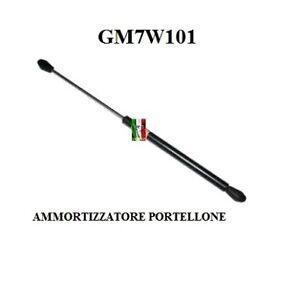 AMMORTIZZATORE PORTELLONE AIXAM 400 - 400.4 - 500.4 - 500.5 GM7W101