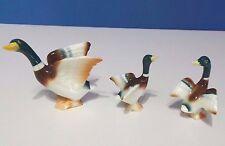 Vintage Sanyo Bone China Mallard Duck Family Miniature Figurine Japan