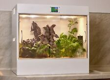 Growbox Ecobox automatic hydroponic installation