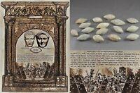 Roman weapon lead sling bullet Munda Caesar Pompey Legionary Ancient Artifact