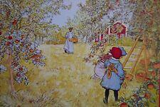"""1 AK Kunstkarte Kinder von Carl Larsson  """"Äppelskörden""""    Q"""
