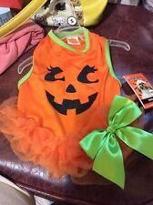 Simply Dog Pumpkin Dress Small
