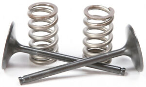 Pro X Steel Valves and Spring Kits Intake 28.SIS6351-2