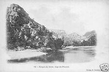 48 - cpa - Gorges du Tarn - Cap du Planiol