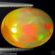 6.21ct FLAWLESS HUGE NATURAL TOP MULTI COLOR PLAY 3D HARLEQUIN OPAL EARTH MINED