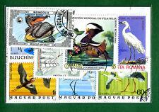COLLEZIONE  UCCELLI ACQUATICI LOTTO 20  Stamps - Timbres - Briefmark