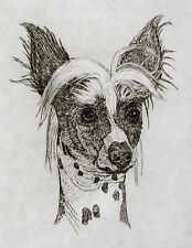 Geoffrey Lasko - Chinese Crested Dog - Listed Artist Etching -S&N - Free Ship Us