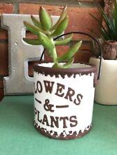 petit vintage céramique SCEAU herbe Pot de fleur ancien décoratif CADEAU MARIAGE